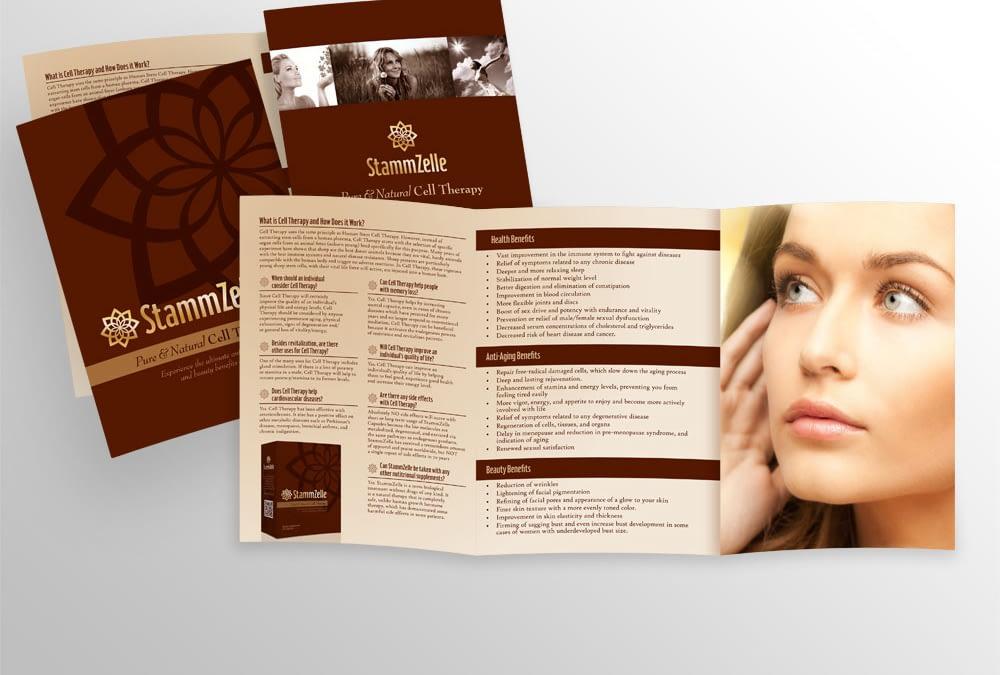 StammZelle Brochure